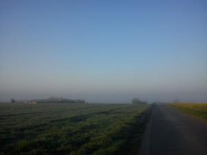 Hannes morgen tur i Vejerslev en diset morgenstund 6- HANNES blog
