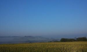 Hannes morgen tur i Vejerslev en diset morgenstund - HANNES blog
