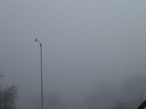 Tåge over Vejerslev - se mere på Hannes blog 220111