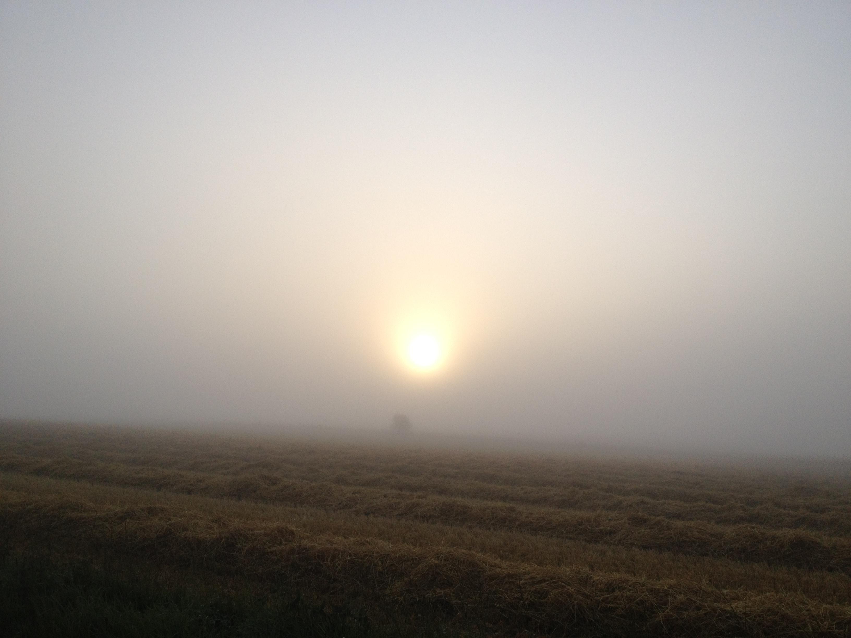 solopgang 1508-2